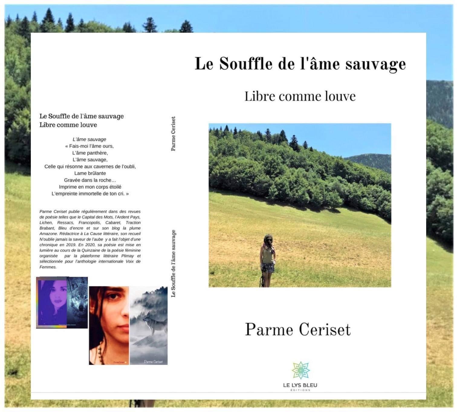 Illustration 1 recueil pour francopolis