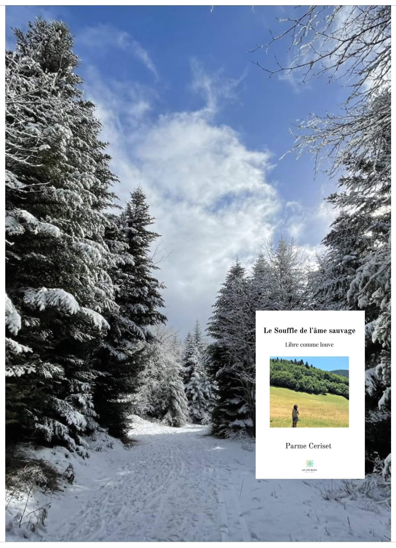 Image recueil dans paysage enneige