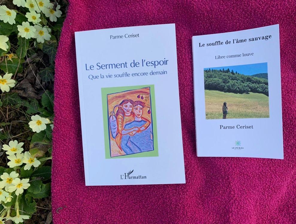 Image roman et recueil primeveres